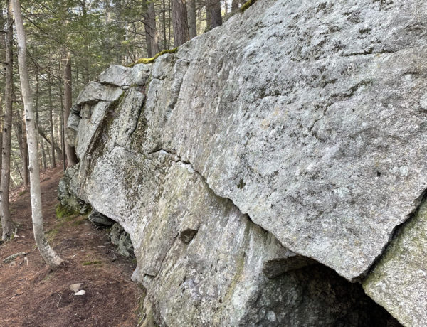 A boulder in the woods at the South Freeport Boulders